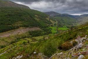 Walking_trails_leitrim_the_miners_way